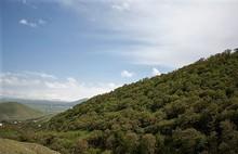 Չարենցավան համայնքի Արզական գյուղի վարչական ղեկավարը հրաժարական է տվել
