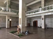 Մեղրաձորի մարզամշակութային կենտրոնն ընդգրկվել է «Մարզային մշակութային հաստատությունների հզորացում և համայնքներում նրանց դերի վերաիմաստավորում» ծրագրում
